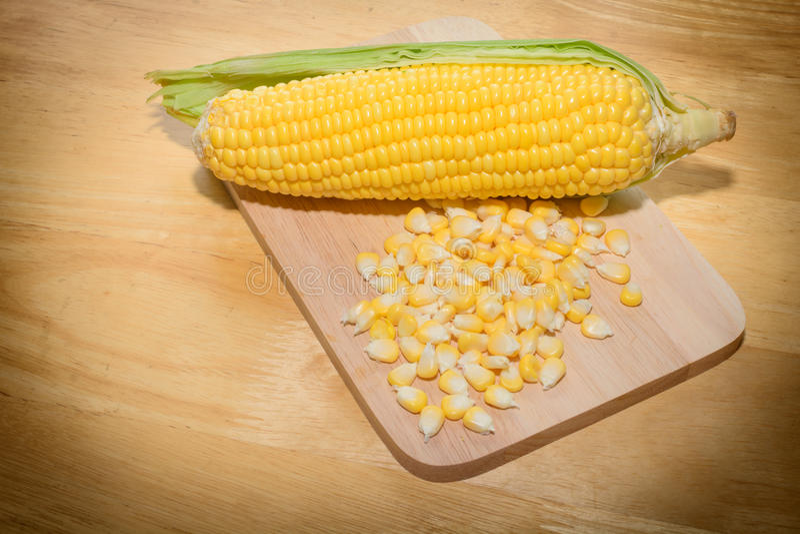 Du maïs jaune est mangé dans le monde photographie stock libre de droits