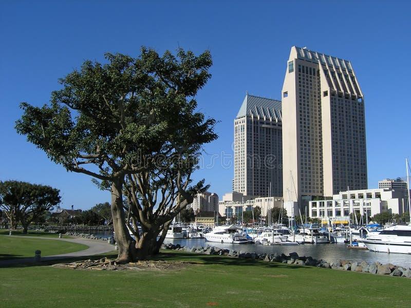 Download Dual Hotels San Diego stock photo. Image of coatline, blue - 1634678