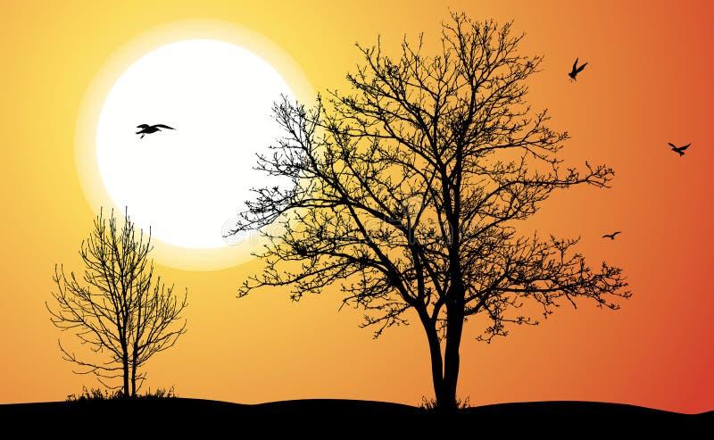 Duas árvores. ilustração do vetor