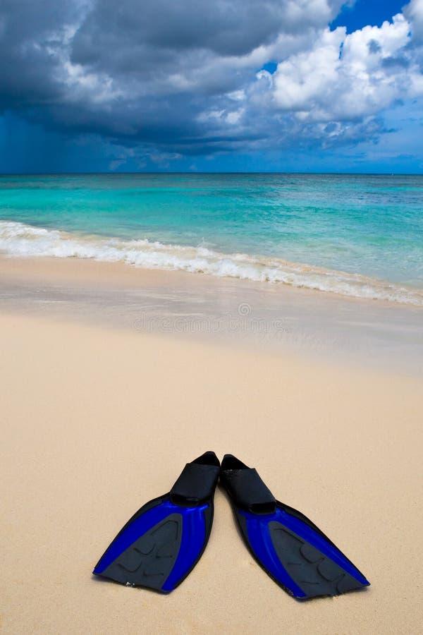 Duas aletas azuis na praia branca da areia imagem de stock royalty free