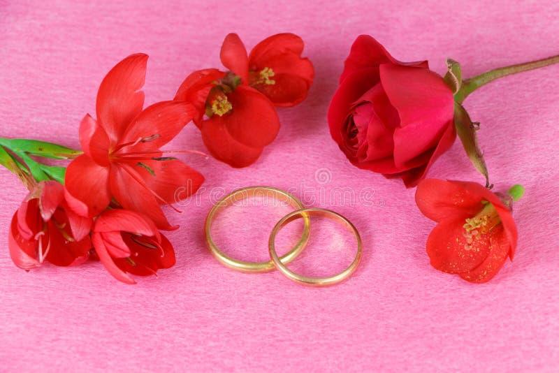 Duas alianças de casamento e flores vermelhas foto de stock royalty free