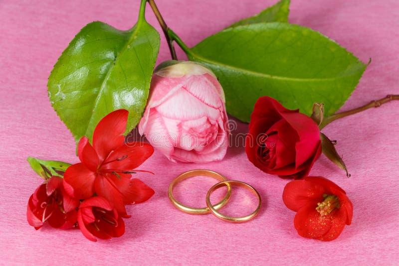 Duas alianças de casamento e flores vermelhas imagens de stock