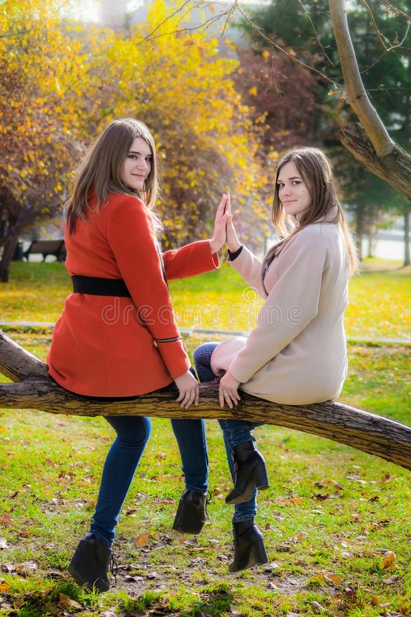 Duas amigas alegres estão sentando-se em um ramo de árvore na paridade imagens de stock royalty free