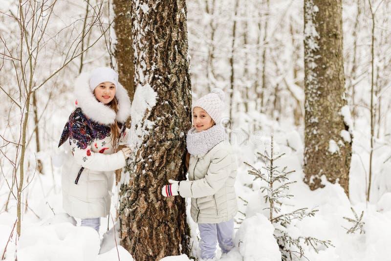 Duas amigas que jogam em uma floresta do inverno fotos de stock