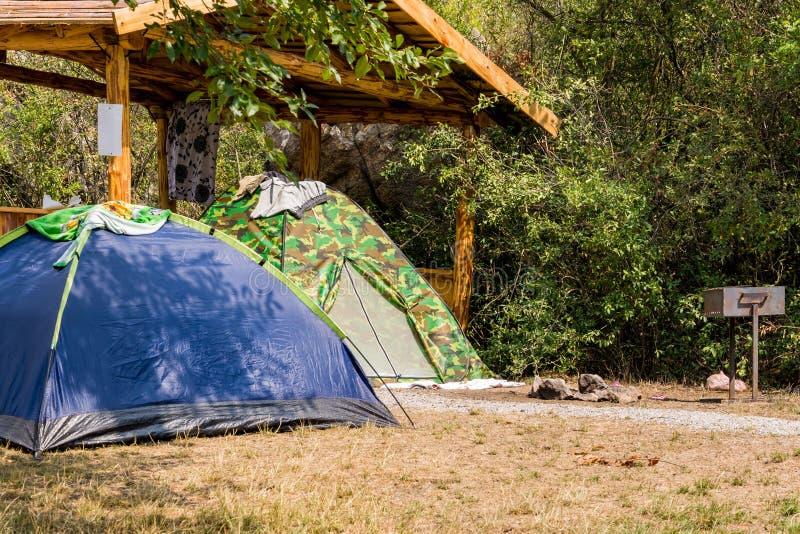 Duas barracas, caqui e azul, suporte na grama perto do mandril de madeira aberto na floresta fotografia de stock