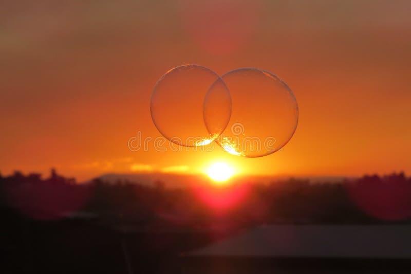 Duas bolhas no por do sol foto de stock