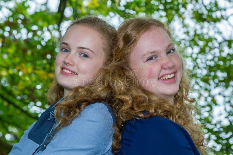Duas cabeças das irmãs junto sob a árvore imagem de stock
