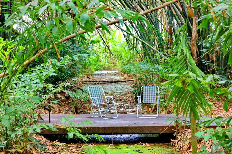 Duas cadeiras azuis no assoalho de madeira no jardim foto de stock