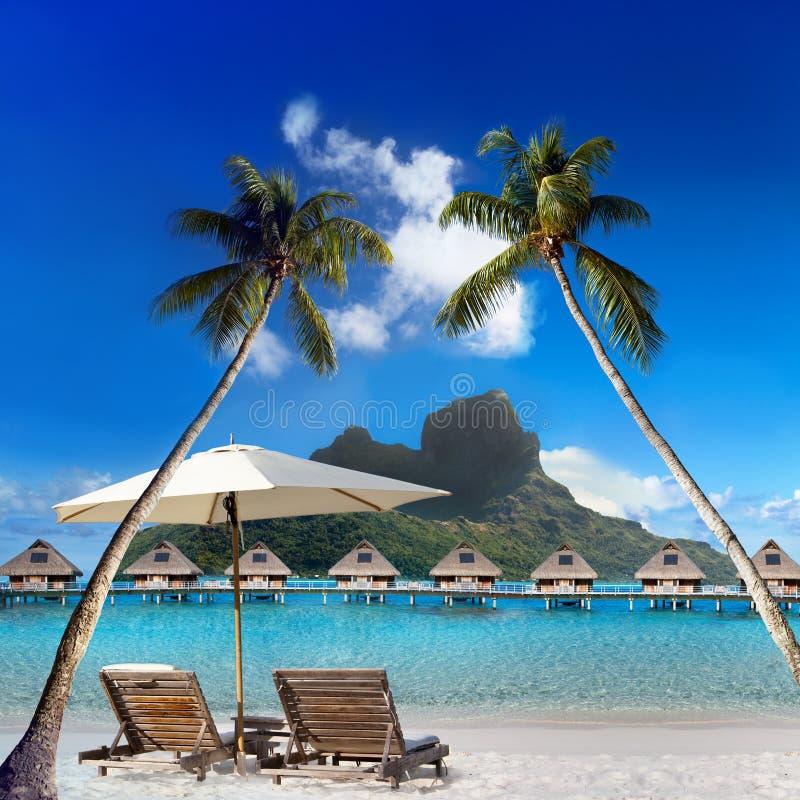 Duas cadeiras de praia e guarda-chuva solar sob uma palmeira e uma vista do mar e das montanhas tahiti fotos de stock royalty free