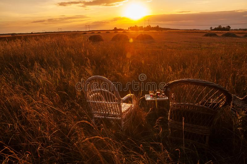 Duas cadeiras de vime e uma bandeja com vidros do vinho entre os campos no por do sol foto de stock royalty free