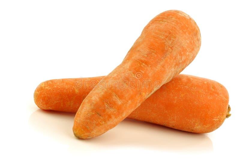 Duas cenouras inteiras frescas do inverno imagem de stock royalty free