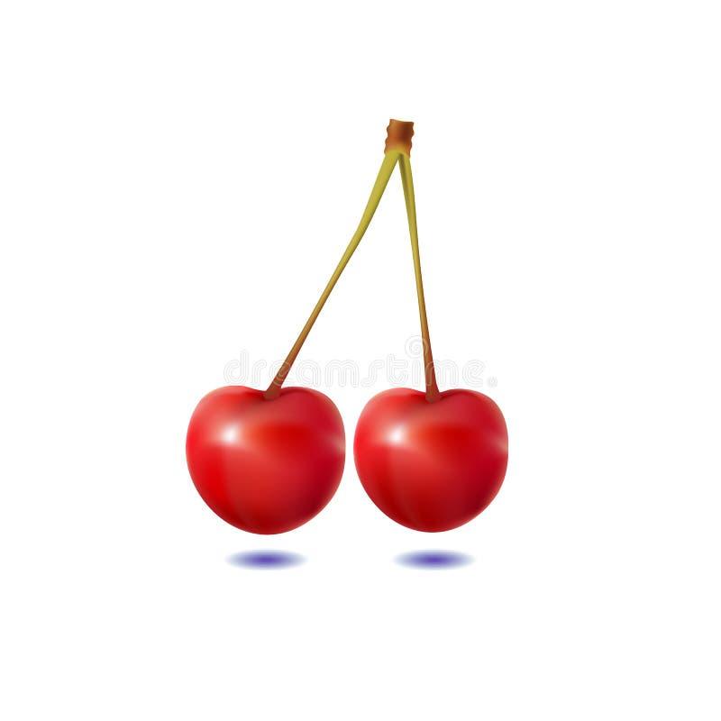 Duas cerejas em um fundo branco foto de stock royalty free