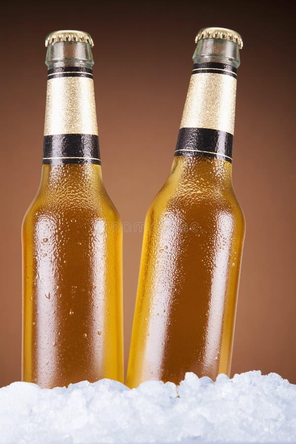 Duas cervejas imagens de stock