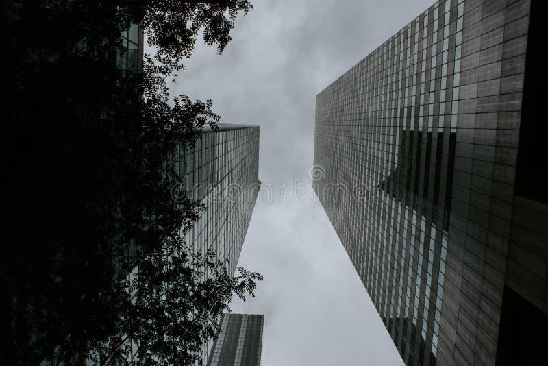 Duas construções altas que enfrentam-se dispararam de um baixo ângulo imagens de stock royalty free