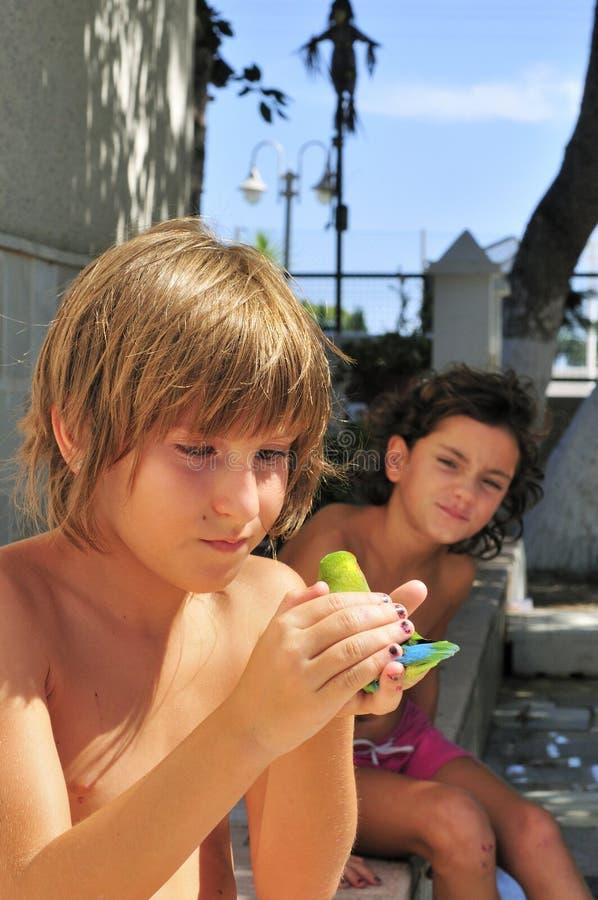 Duas crianças e um pássaro imagens de stock