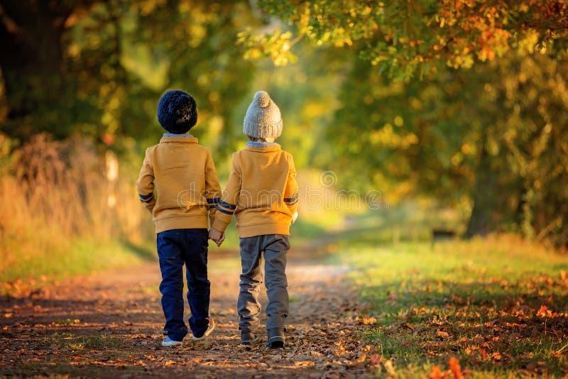 Duas crianças, meninos, andando na borda de um lago em um aut ensolarado fotografia de stock royalty free