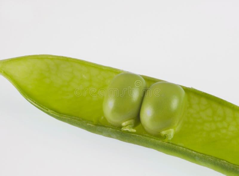 Duas ervilhas em um vagem imagem de stock