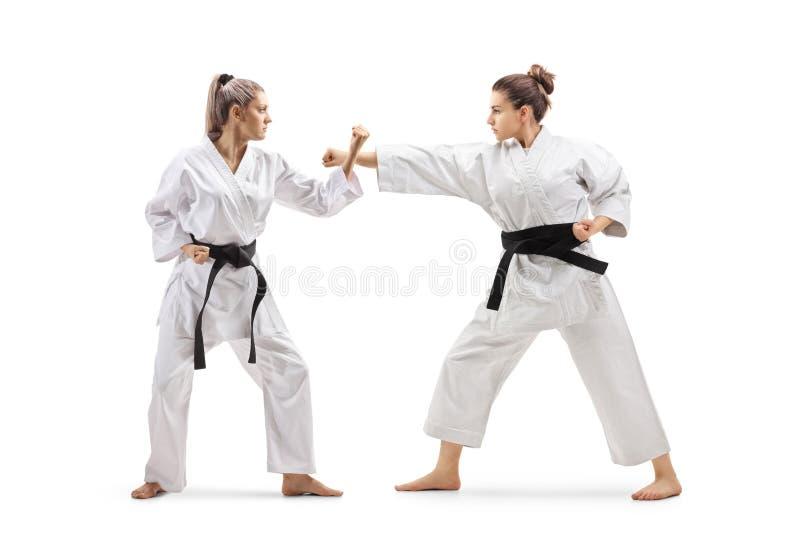Duas fêmeas nos quimonos que praticam o karaté imagem de stock