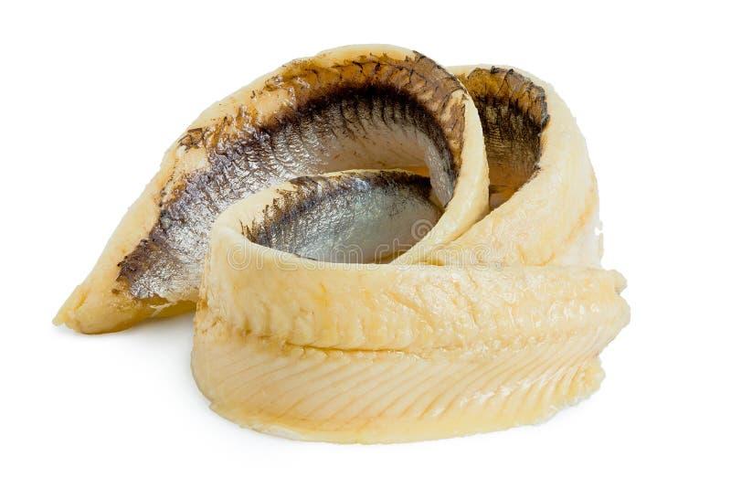 Duas faixas roladas da anchova isoladas no branco imagens de stock