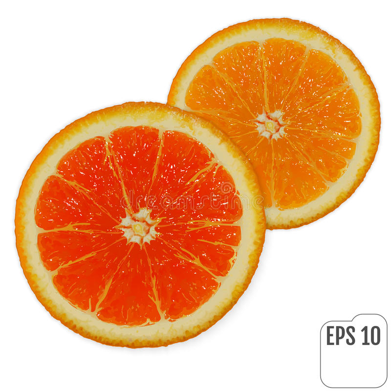 Duas fatias de laranjas suculentas frescas no fundo branco Vermelho e ilustração royalty free