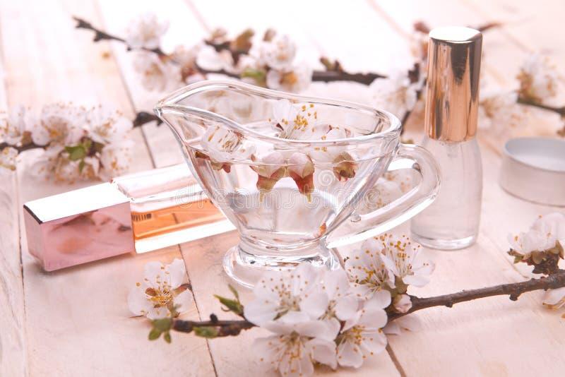 Duas garrafas do perfume cercadas pela flor do abricó imagem de stock