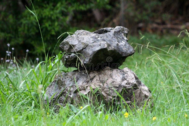 Duas grandes pedras molhadas interessantes empilharam um sobre o outro cercadas com grama sem cortes alta e as flores pequenas no imagens de stock