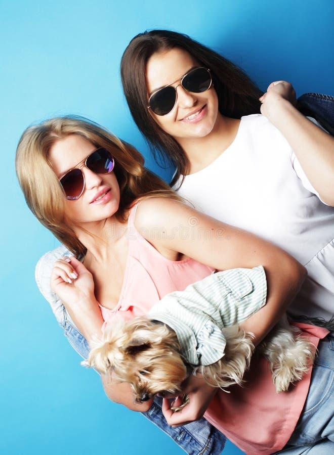 Duas irmãs adolescentes com yorkshire terrier imagem de stock