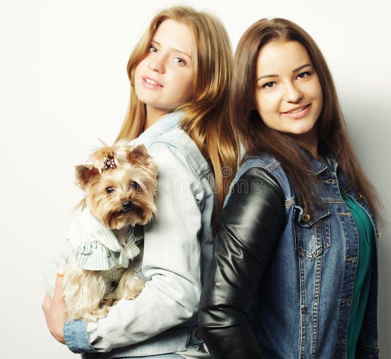 Duas irmãs adolescentes com yorkshire terrier imagens de stock