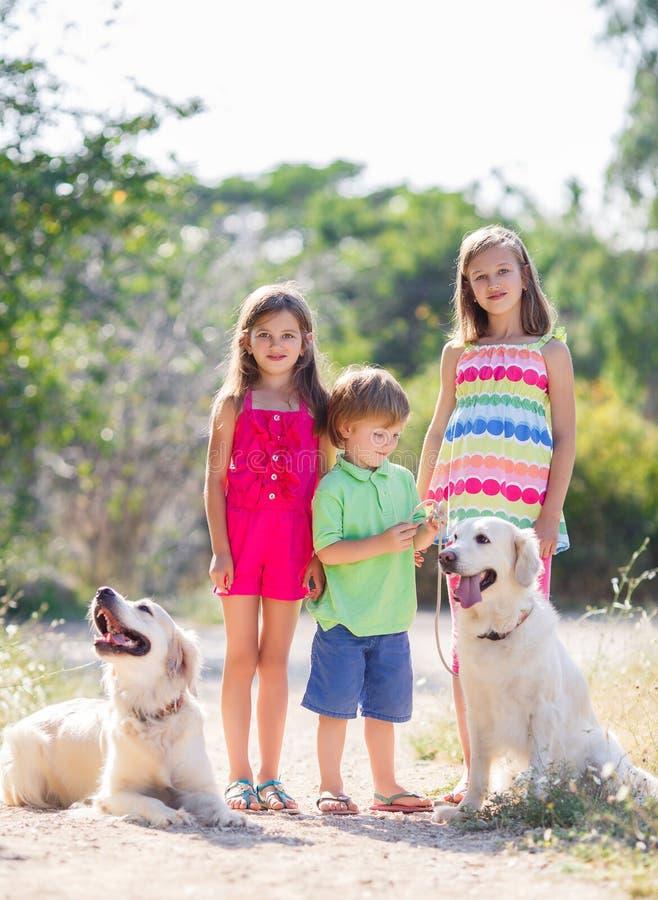 Duas irmãs e irmão para uma caminhada com os cães fotografia de stock royalty free