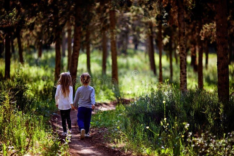 Duas irmãs mais nova que andam e que jogam na estrada no campo em um por do sol morno do verão Meninas bonitos Vista traseira fotografia de stock royalty free