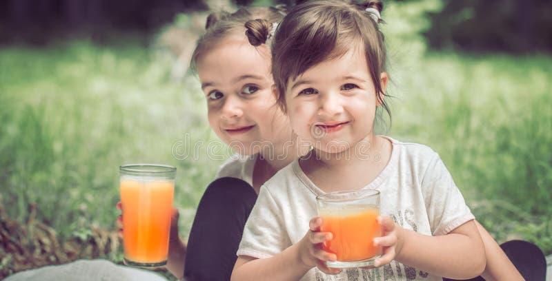 Duas irmãs mais nova que bebem o suco imagem de stock