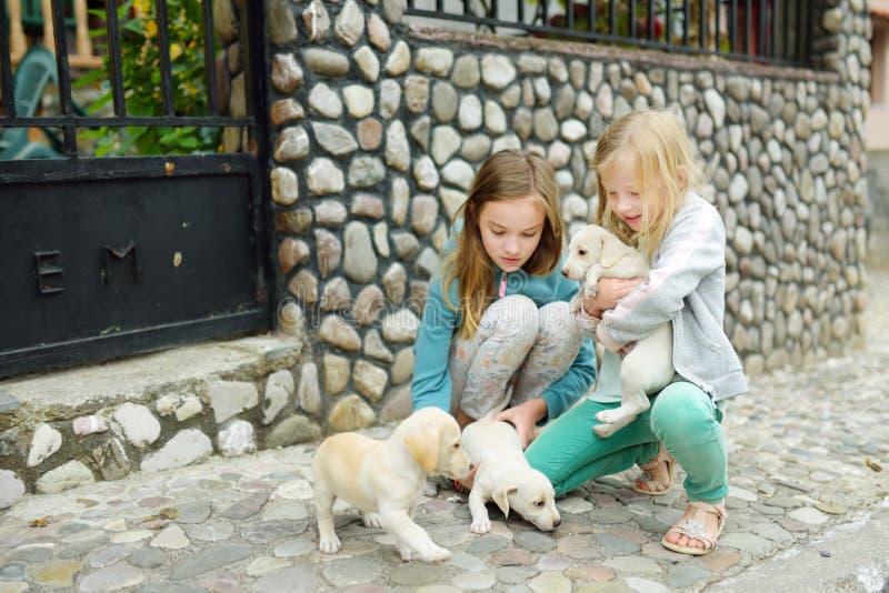 Duas irmãs novas bonitos que guardam cachorrinhos brancos pequenos fora Crianças que jogam com os cães do bebê no dia de verão foto de stock royalty free