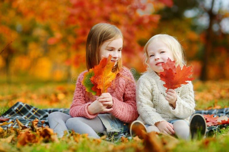 Duas irmãs que têm o divertimento junto no parque do outono foto de stock royalty free