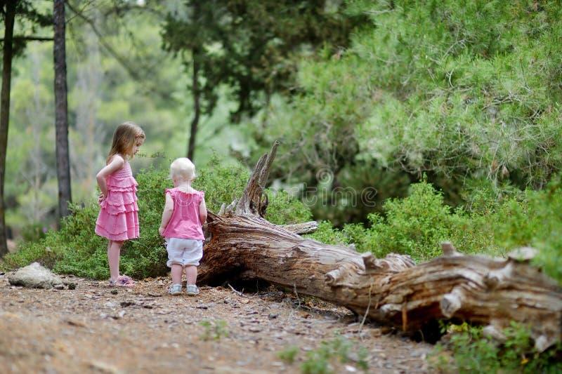 Duas irmãs que têm uma caminhada nas madeiras imagens de stock