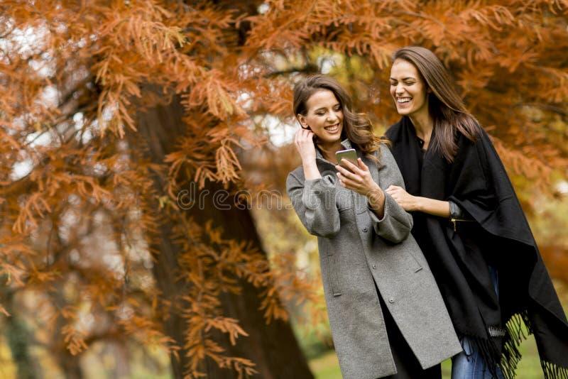 Duas jovens mulheres bonitas que usam o telefone celular na floresta do outono fotografia de stock royalty free