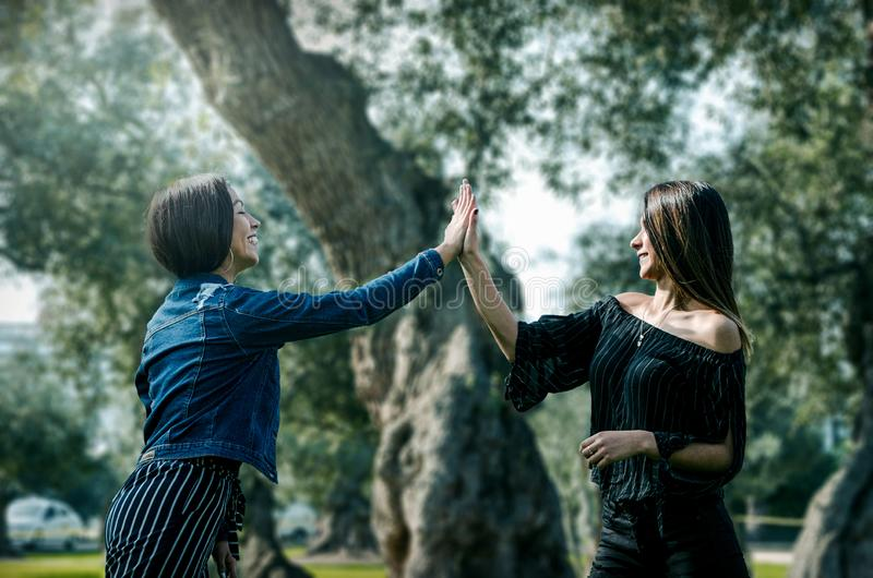 Duas jovens mulheres no parque que dá a elevação cinco fotos de stock royalty free