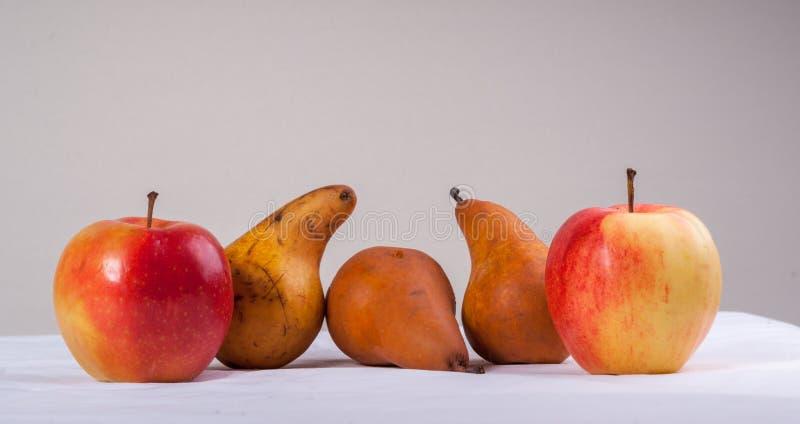 Duas maçãs e peras vermelhas bonitas da árvore fotos de stock