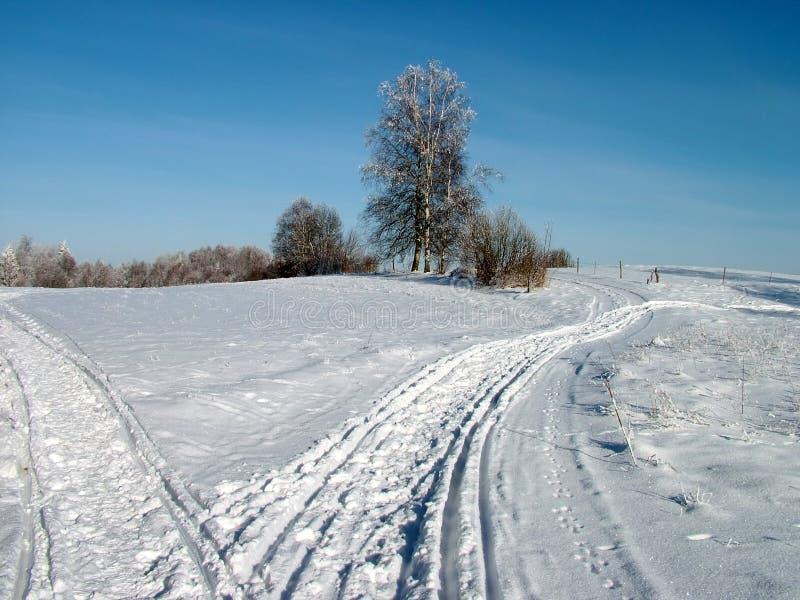 Duas maneiras do inverno fotografia de stock royalty free