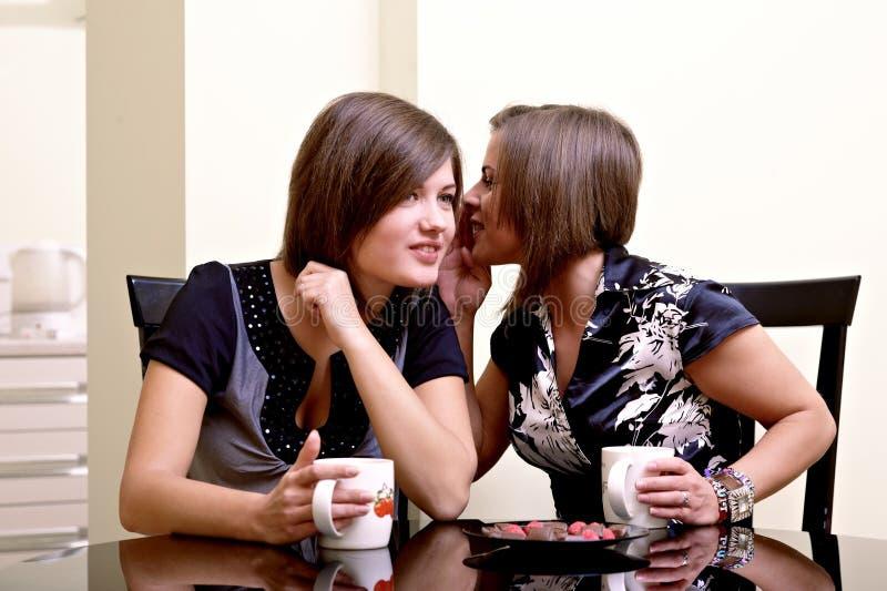 Duas meninas alegres. fotografia de stock