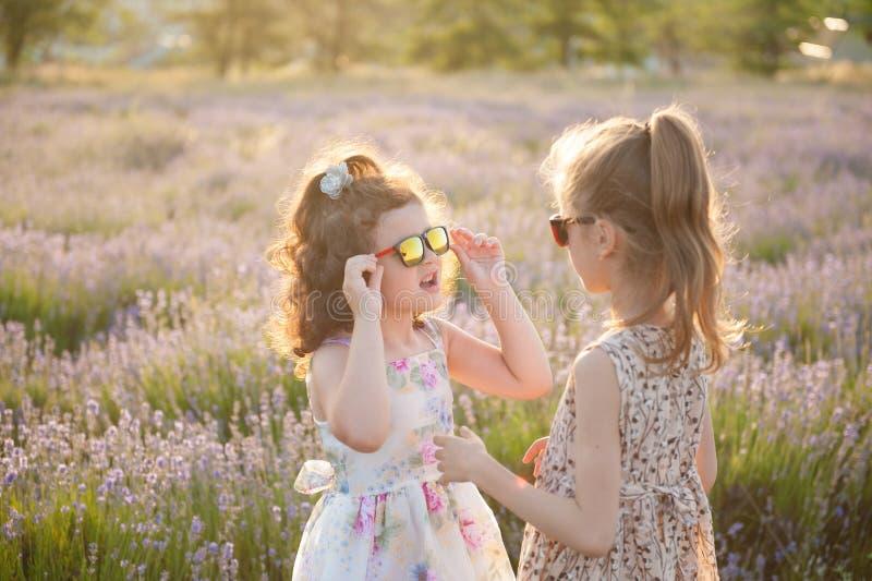 Duas meninas bonitas nos vestidos e nos óculos de sol entre o verão dos campos de flor foto de stock royalty free