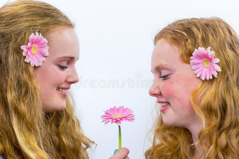 Duas meninas de cabelos compridos com flores cor-de-rosa fotografia de stock