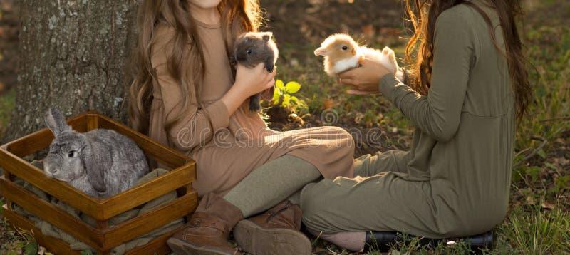 Duas meninas estão sentando-se sob uma árvore nos coelhos pequenos da grama e das trocas de carícias, guardando um grande coelho  imagem de stock