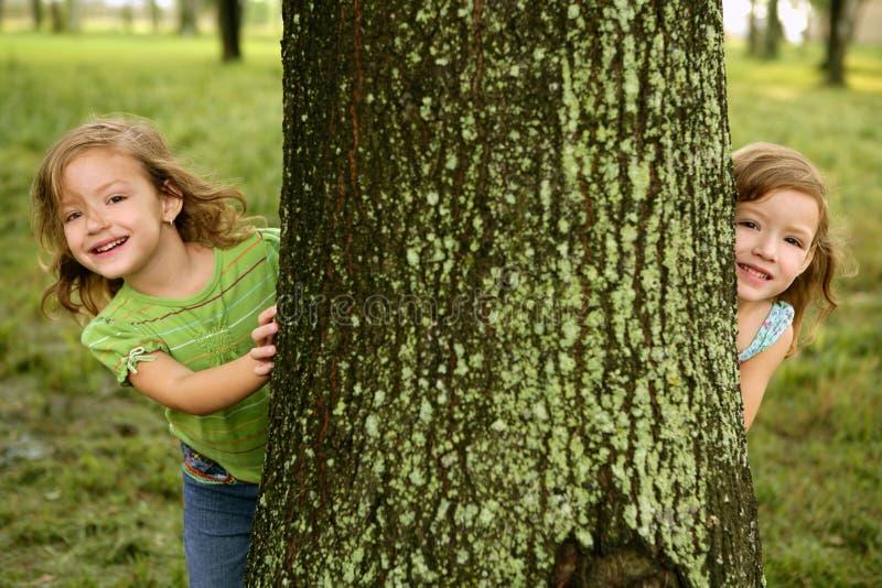 Duas Meninas Gêmeas Que Jogam No Tronco De árvore Fotos de Stock Royalty Free