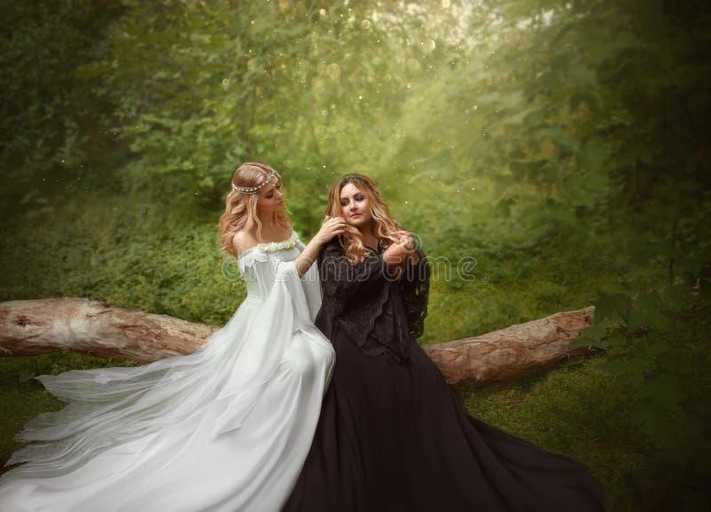 Duas meninas louras diferentes, o oposto do branco e magia negra A irmã mais nova trança a trança mais velha do ` s, sentando-se imagens de stock