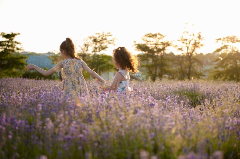 Duas meninas running saudáveis entre campos de flor da flor no verão fotografia de stock