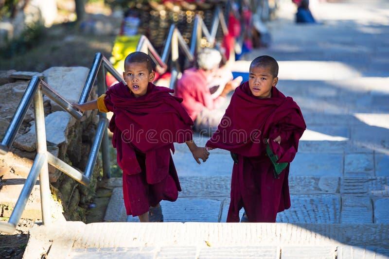 Duas monges budistas tibetanas do principiante em conjunto, Nepal imagem de stock royalty free
