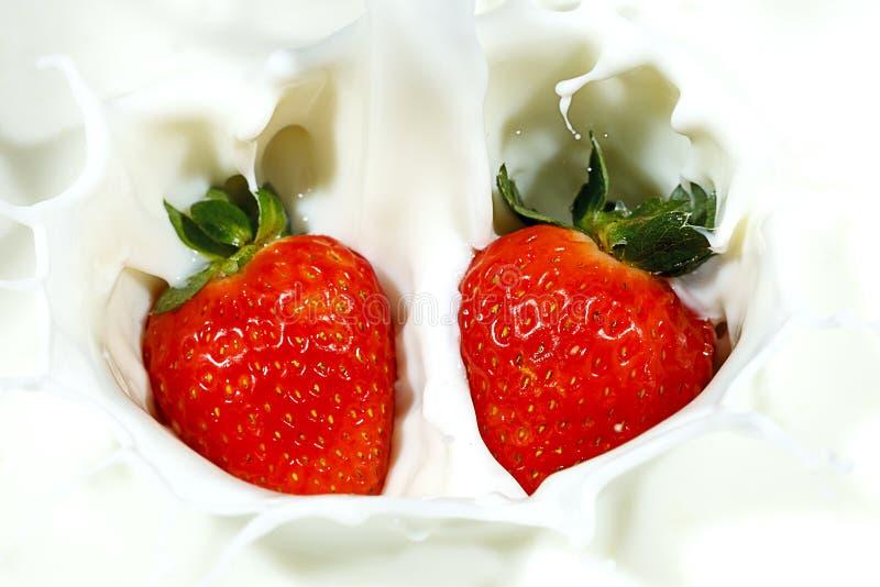 Download Duas Morangos Deixaram Cair No Leite Imagem de Stock - Imagem de doce, produto: 107529373