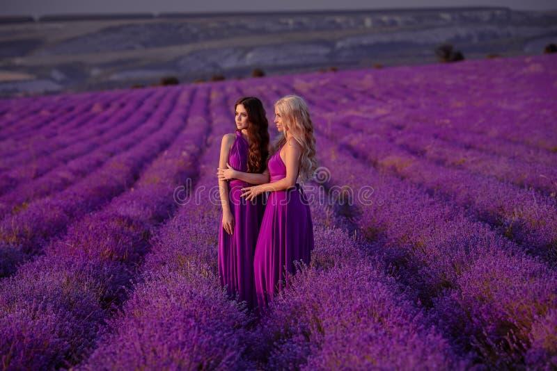 Duas mulheres bonitas despreocupadas que apreciam o por do sol no campo da alfazema harmonia Louro e moreno atrativos com pentead imagem de stock