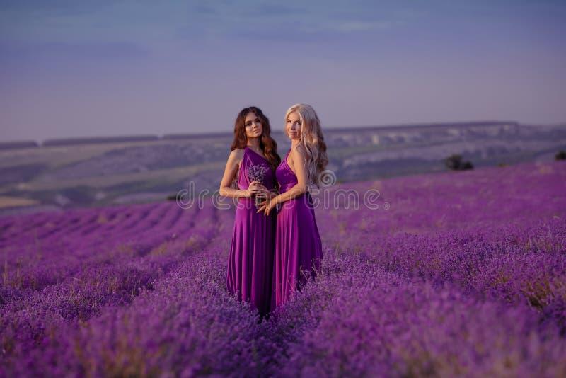 Duas mulheres bonitas despreocupadas que apreciam o por do sol no campo da alfazema harmonia Louro e moreno atrativos com pentead imagens de stock royalty free