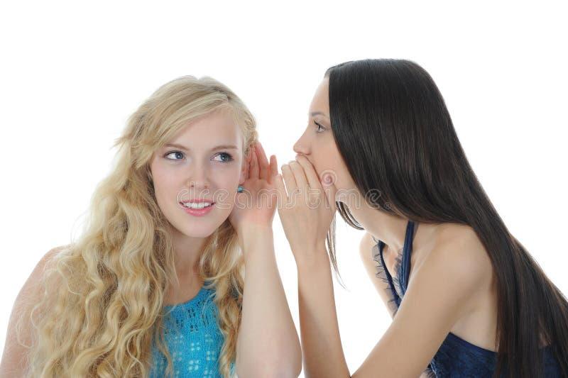 Duas mulheres bonitas que dizem o segredo fotografia de stock royalty free